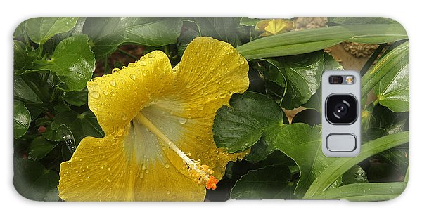 Yellow Hibiscus Flower Galaxy Case by Ronald Olivier