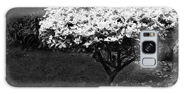 Yellow Leafed Shrub In Monochrome. Galaxy Case