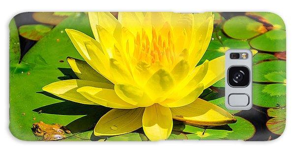 Yellow Lily Galaxy Case by John Johnson