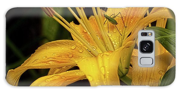 Yellow Lily With Bug Galaxy Case