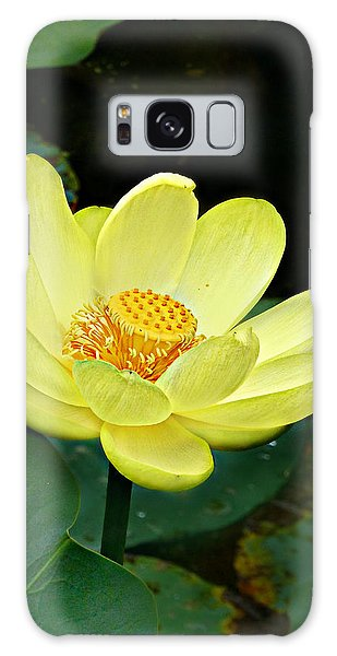 Yellow Lotus Galaxy Case