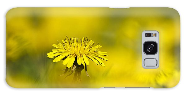 Yellow On Yellow Dandelion Galaxy Case