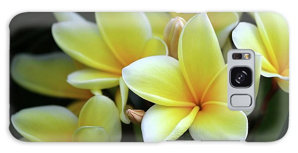 Yellow Plumeria Cascade Galaxy Case