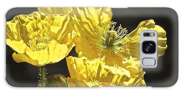 Yellow Poppies Galaxy Case