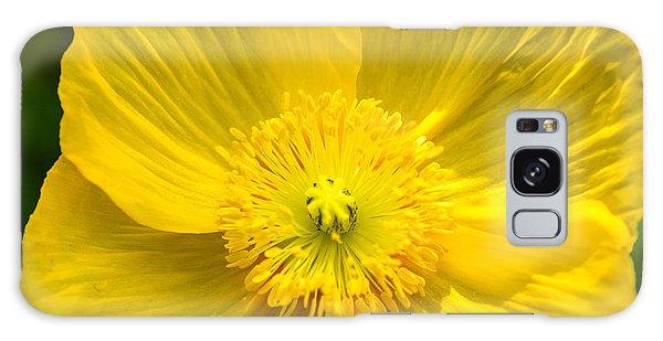 Yellow Poppy Galaxy Case