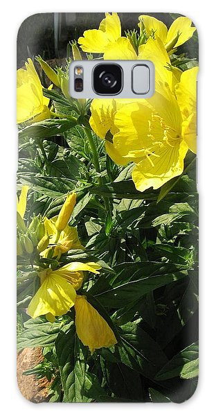Yellow Primroses Galaxy Case