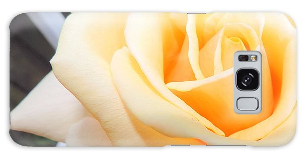 Yellow Rose And Trellis Galaxy Case