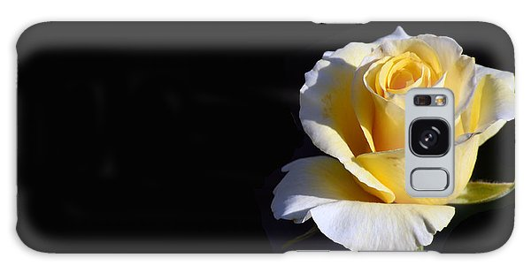 Yellow Rose On Black Galaxy Case