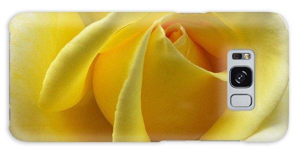 Yellow Rose Softness Galaxy Case
