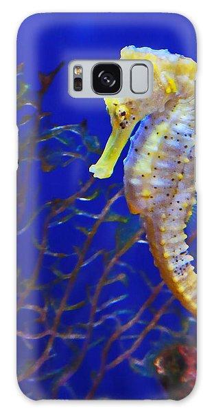 Yellow Sea Horse Galaxy Case