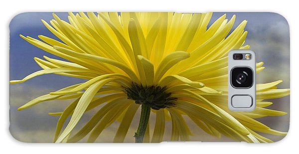 Yellow Spider Chrysanthemum Galaxy Case