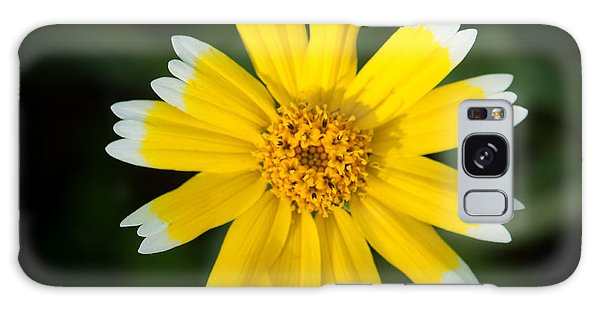 Yellow Sunshine  Galaxy Case by Gandz Photography