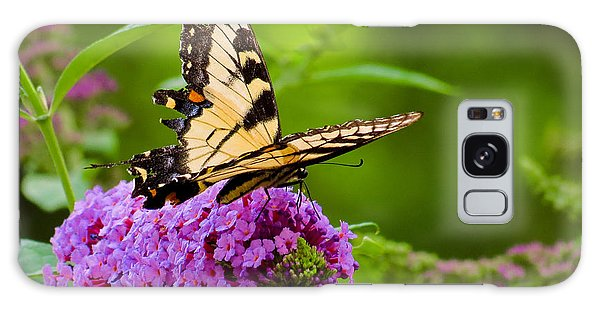 Yellow Tiger Swallow Tail Butterfly Galaxy Case