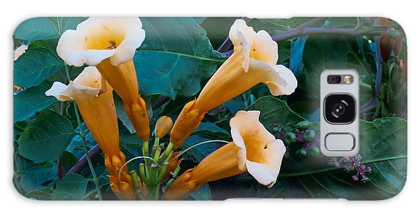 Yellow Trumpet Blooms 04 Galaxy Case