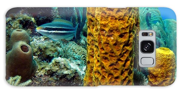 Yellow Tube Sponge Galaxy Case by Amy McDaniel