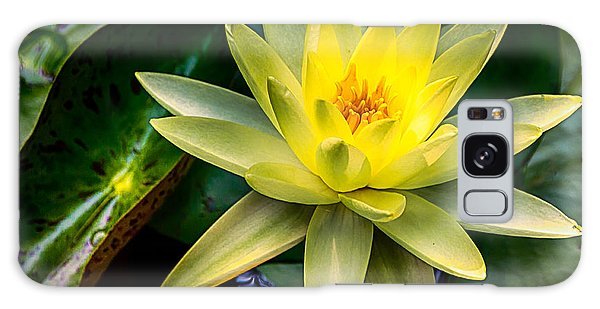 Yellow Water Lily Galaxy Case