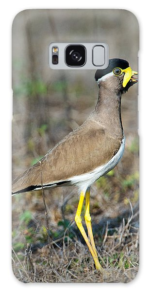 Lapwing Galaxy Case - Yellow-wattled Lapwing Vanellus by Panoramic Images