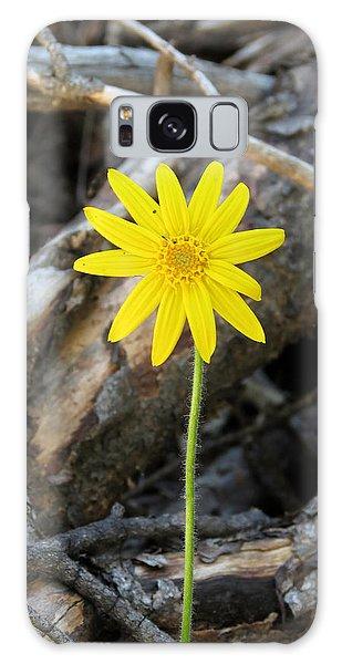 Yellow Wildflower Galaxy Case by Laurel Powell