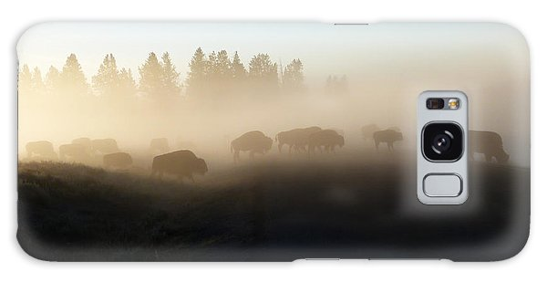 Yellowstone Bison In Early Morning Fog Galaxy Case