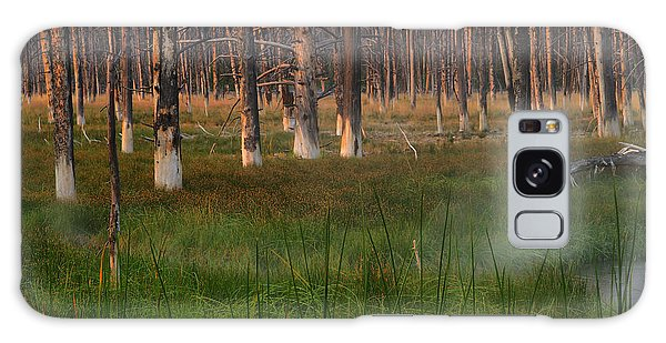 Yellowstone Mysterious Morning Galaxy Case by Teresa Zieba