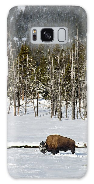 Yellowstone Winter Galaxy Case