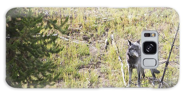 Yellowstone Wolf Galaxy Case by Belinda Greb