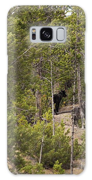 Yellowstone Wolves Galaxy Case by Belinda Greb