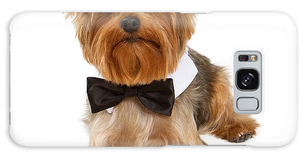 Yorkshire Terrier Dog With Black Tie Galaxy Case