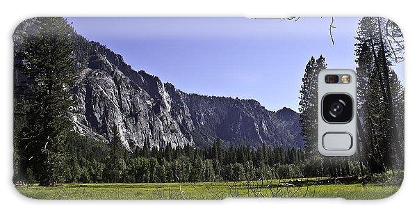 Yosemite Meadow Galaxy Case