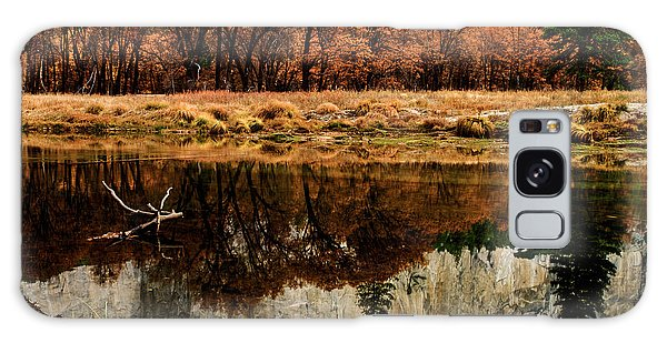 Yosemite Reflections Galaxy Case by Terry Garvin
