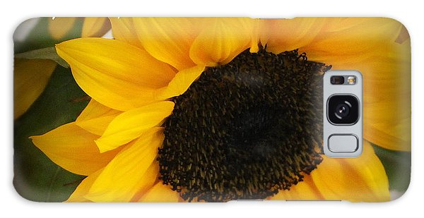 You Are My Sunshine - Greeting Card Galaxy Case