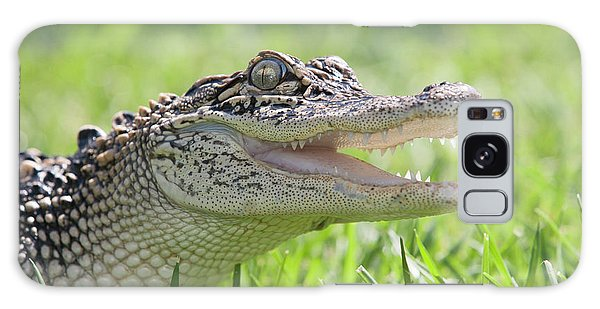 Young Alligator With Mouth Open Galaxy Case
