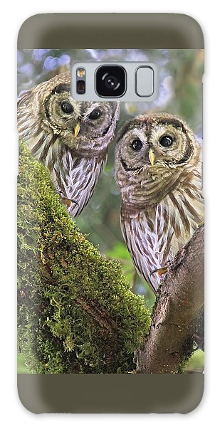 Young Barred Owlets  Galaxy Case