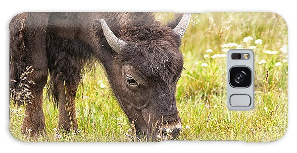 Young Bison Galaxy Case by Belinda Greb