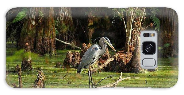 Young Blue Heron Galaxy Case