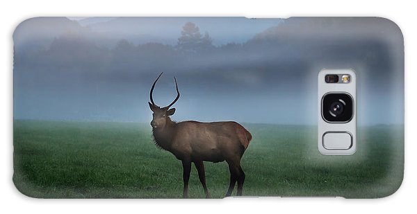 Young Bull Elk In The Pasture Galaxy Case