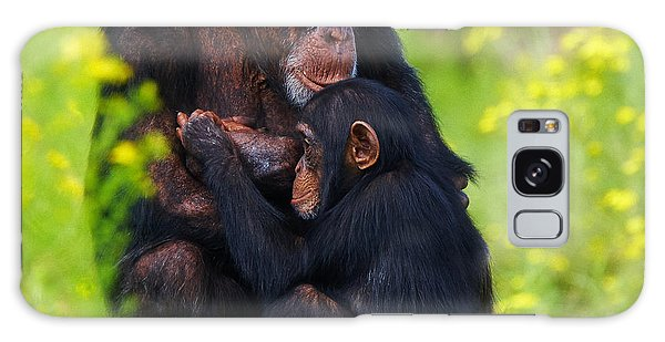 Young Chimpanzee With Adult - II Galaxy Case