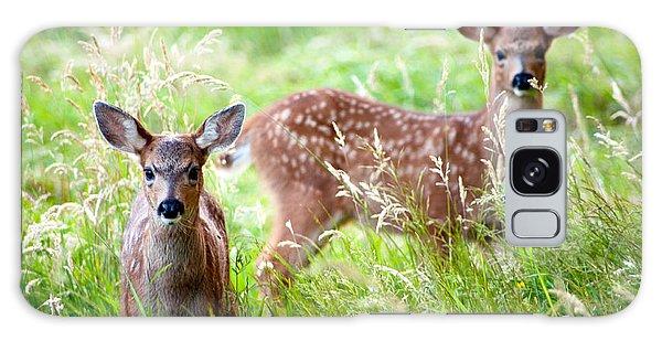 Young Deer Galaxy Case