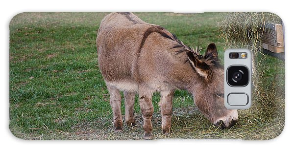 Young Donkey Eating Galaxy Case