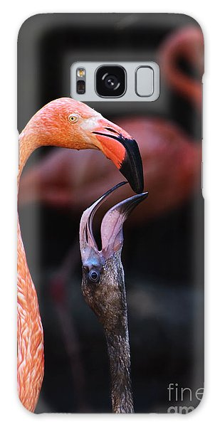 Young Flamingo Feeding Galaxy Case by Terry Garvin