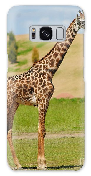 Young  Giraffe Galaxy Case