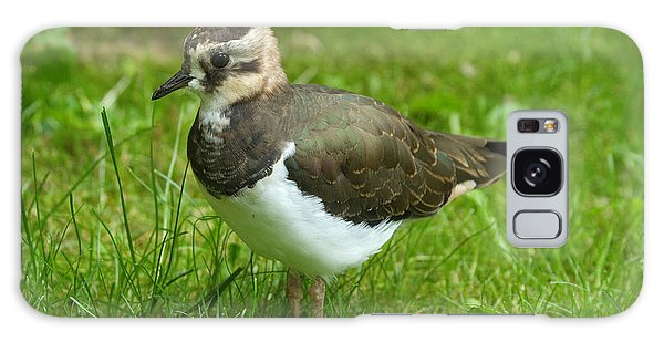 Lapwing Galaxy Case - Young Lapwing by Helmut Pieper
