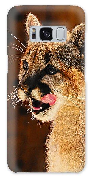 Young Mountain Lion Galaxy Case