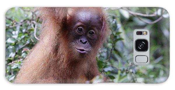 Young Orangutan Kiss Galaxy Case