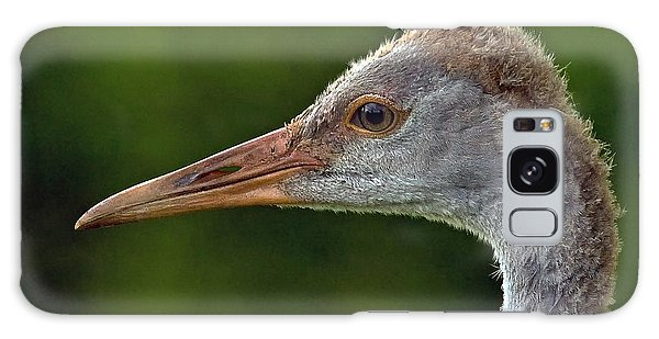 Young Sandhill Crane Galaxy Case
