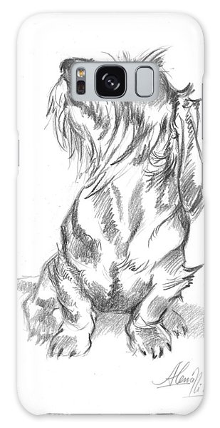 Young Wire-haired Dachshund Looking Up Galaxy Case