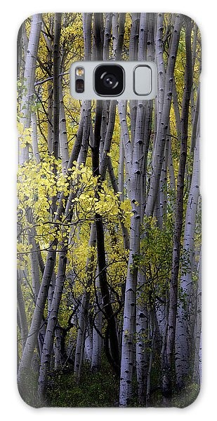 Young Aspens Galaxy Case