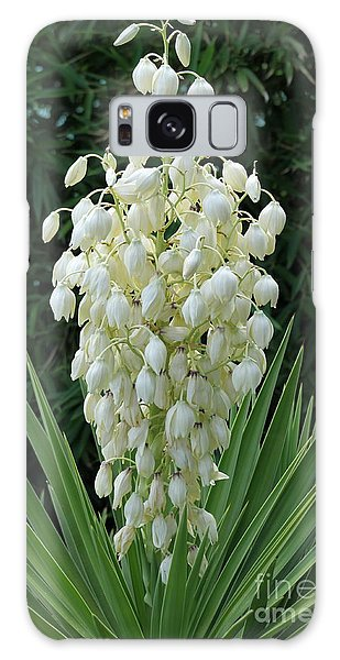 Yucca Blossoms Galaxy Case by Christiane Schulze Art And Photography