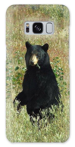 Yukon Black Bear Galaxy Case