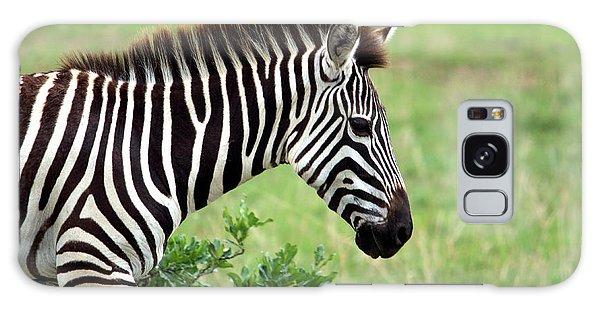 Zebra Galaxy Case